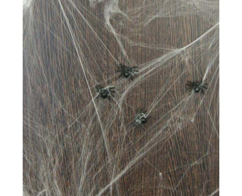 Spinnenweb 20 gram wit met spinnen