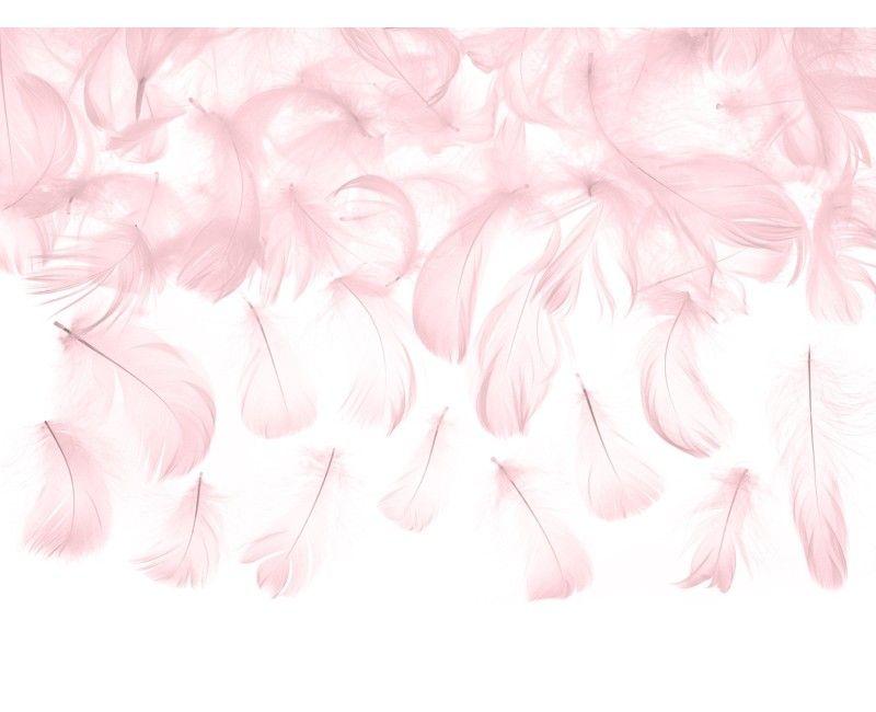 Zakje decoratieve veren lichtroze