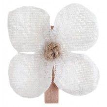 Orchideeën met knijpertje, 6 stuks