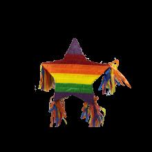 Pinata Regenboog ster
